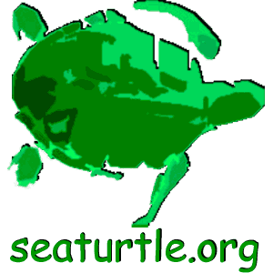 Sea Turtle Multimedia Guide